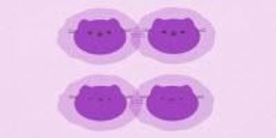 'Schroedinger's Cat' Molecules Give Rise to Exquisitely Detailed Movies