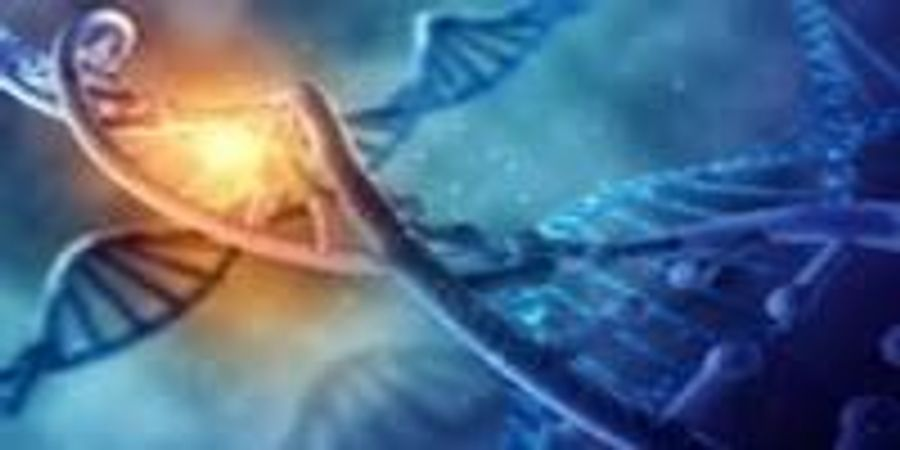 Shedding Light on the Limits of the Expanded Genetic Code