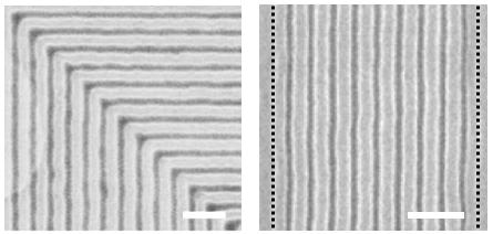 block copolymer films
