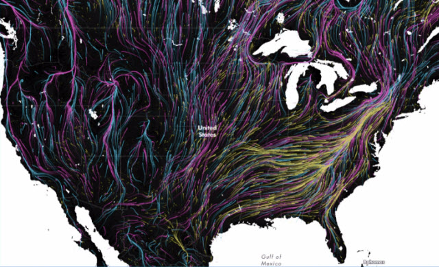 map of animal migrations