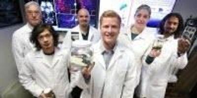 Researchers Innovate Brain Preservation Technique