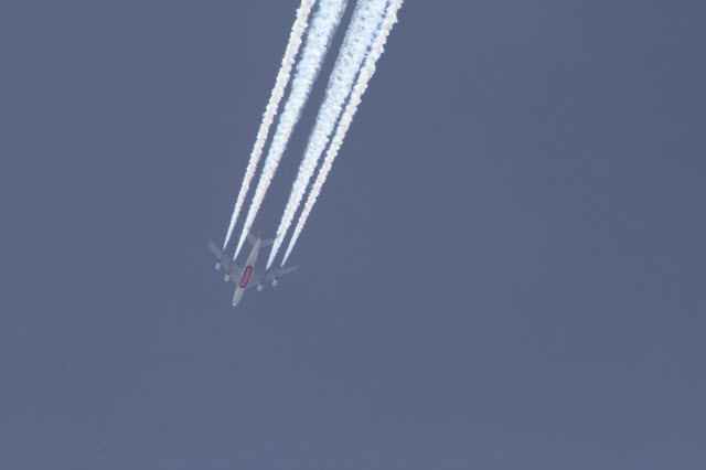 Surveyed scientists debunk chemtrails conspiracy theory