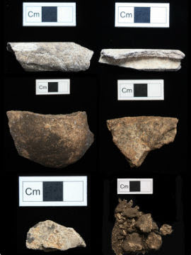 Selection of bone fragments from Cnoc Coig