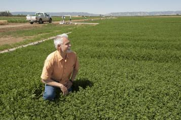 Tom Tomich, director of the UC Davis Agricultural Sustainability Institute