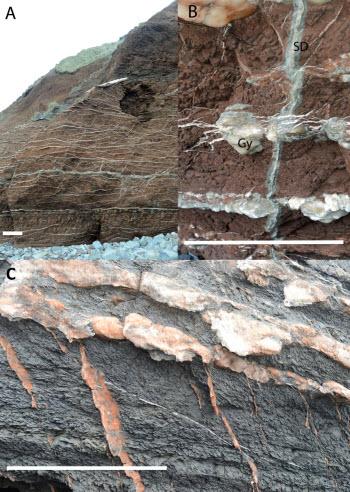 Mars minerals