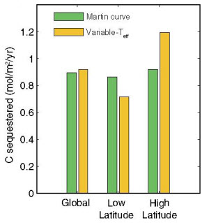 carbon storage at the low and high latitudes