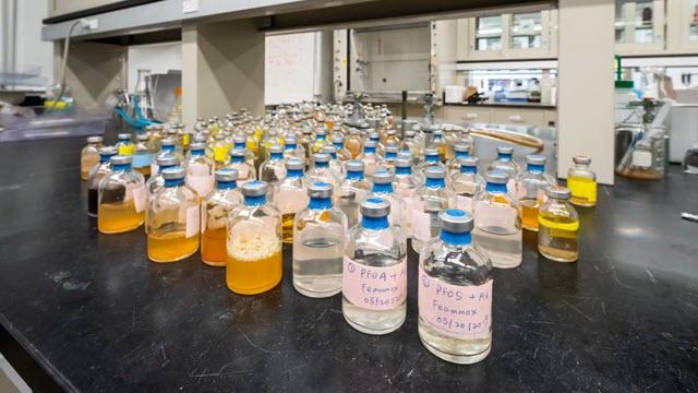 Microbe Degrades Tough Pollutant