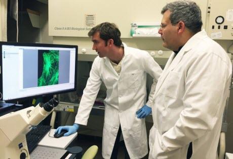 examining cell