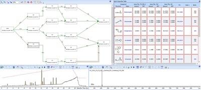 Spectrus' batch genealogy tool