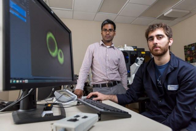 Principal investigator Amit Reddi and lead researcher David Hanna