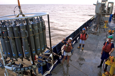 Scientists, including UGA researcher, discover new reef system at mouth of Amazon River