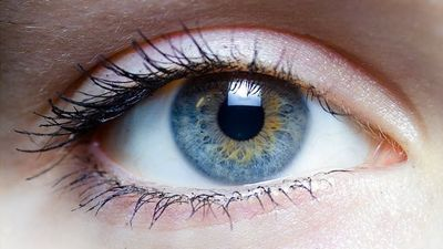 Easier Treatment for Blinding Eye Disease Shows Promise in Clinical Trial