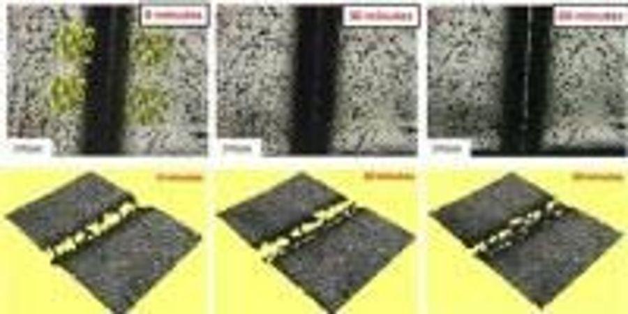 Chemists Unveil Plastic That Heals Itself at Body Temperature